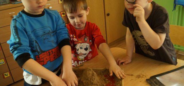 Tydzień kolorów- dzień brązowy- zabawy badawcze z glebą.