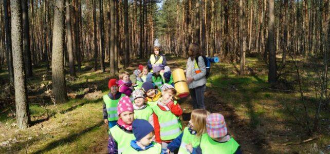 Spacer grupy młodszej do lasu.