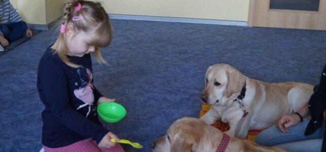 Rozpoczęły się zajęcia terapeutyczne z psami.